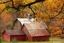 Barns, Sheds, Country sides and houses / by Debbie Bailey Ray