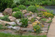Rock Garden / rock gardens