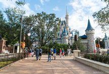 Atracciones Disney World 2015-2017
