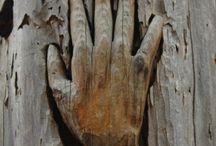 hout sculpturen