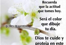 Juanitobanana Gmail Com Ibañez Juanitobanana4152 Perfil Pinterest