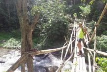 Trekking in Bali / Jungle walking of all ability