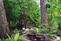tajemniczy ogrod