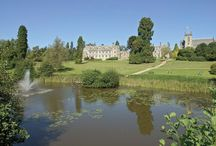 Ashdown Forest - Fab Places to Stay / Loads of fabulous places to stay on the Forest. Camper vans to 5 star Country House Hotels.  There really is something for everyone!