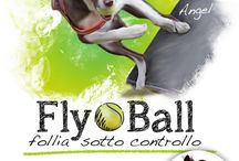 FlyBall / Dogs & Flyball - Cani & FlyballLet's play together | Giochiamo insieme | Sweetdog creates your best personalized T-Shirt for your competitions! | Sweetdog crea la tua migliore maglietta personalizzata per le vostre gare!