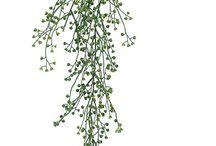 Christina flowers