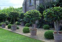 terrace pot options