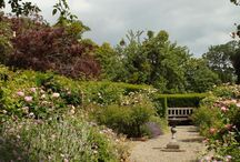 Special Places at Bryngwyn Hall and Gardens
