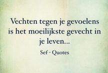 Nederlandse citaten