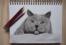 My Drawing / #drawing #DRAWING #potography #art #design #colorpencil #color #foto #kreslene #rysowanie #rysunek #pencil #graphite #Graphitepencil #pencil #drawing #rysunek #ołówek #grafit #painting