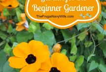 Gardening with The Frugal Navy Wife / Gardening tips and tricks to help your garden grow from The Frugal Navy Wife blog!