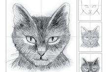 Drawing Cats / How to Draw a Cat with Tutorials