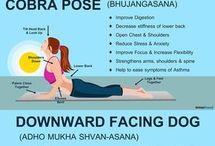 Yoga program for beginners