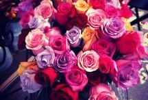Beautiful things / Flowers Dresses Audrey.