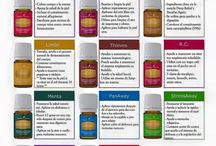 Young Living Spanish