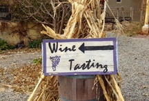 Wine Tastings in New Mexico