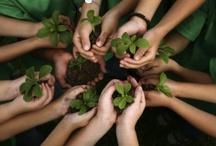 Plants Leading the World