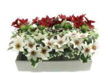 Christmas Stems, Sprays & Picks / Artificial flowers with a Christmas theme.