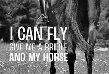<3 Equestrian <3