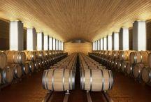 Ernie Els - Cellar Barrel Display