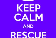 Animal Support / Rescue Canine & Feline
