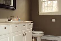House / Paints, furniture, flooring, ect...
