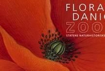 Flora Danica ZOOM