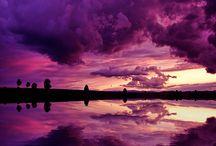 Purple PanCan photos