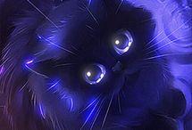 Cat 1234