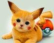 Pets I want