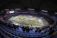 Buffalo Bills / by The Buffalo News