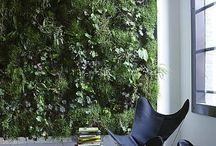 Vertical greenwalls