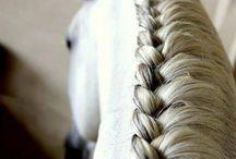 #Ló sörény* / Gyönyörű lósörények!