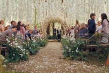 Midsummer's Night Dream Wedding / by Caitlin Anne Rudnick (Mackay)