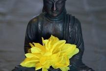 Buddha & Zen & Monks
