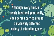 Microbiome Facts