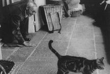 Scrittori e animali