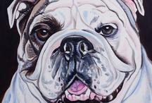 bulldog paintings / by Jill Metzger