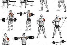 fitnis omuz