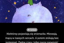 cytaty polskie