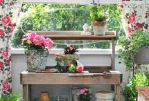 Potting Bench / Where do you hang your potting tools?  Don't forget your gloves!