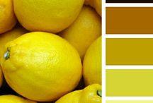 YELLOW | ŽLUTÁ / Žlutá je v zásadě veselá a optimistická barva přinášející aktivitu a dobrou náladu. V interiérech je hojně používána a oblíbená. Je barvou největší odrazivosti po bílé. Opticky prostor rozšiřuje a přidává do něj pocit slunečního světla. Je vhodná do severních, tmavých prostor, jako jsou vstupní haly či předsíně, anebo do prostor bez přirozeného světla... http://paletabarev.webnode.cz/yellow/