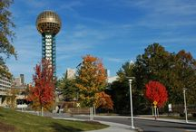 Knoxville Eats & Drinks / The best places to eat and drink in home sweet Knoxville / by Kathryn Gibson - Realtor®