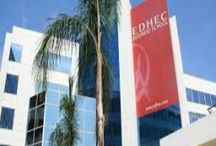 EDHEC Global MBA Scholarships  & Other Top FREE Scholarships / EDHEC Global MBA Scholarships  & Other Top FREE Scholarships