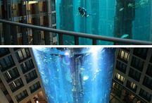 Places I Want To Visit