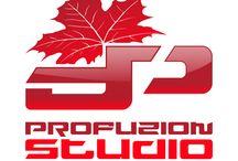 Profuzion Studio / I help you grow your brand confidently, through brand, website, and digital strategies. Contact me to start attracting ideal clients. - Lowell Klassen   profuzionstudio.com