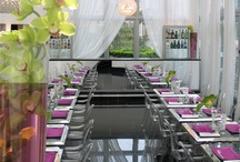 Restaurant / Restaurant with a beautiful terrace, Sunday brunch and afterworks