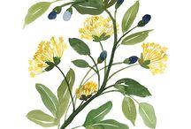 rastlinky print