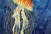 Óceáni élővilág