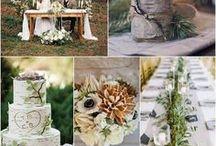Shauna wedding